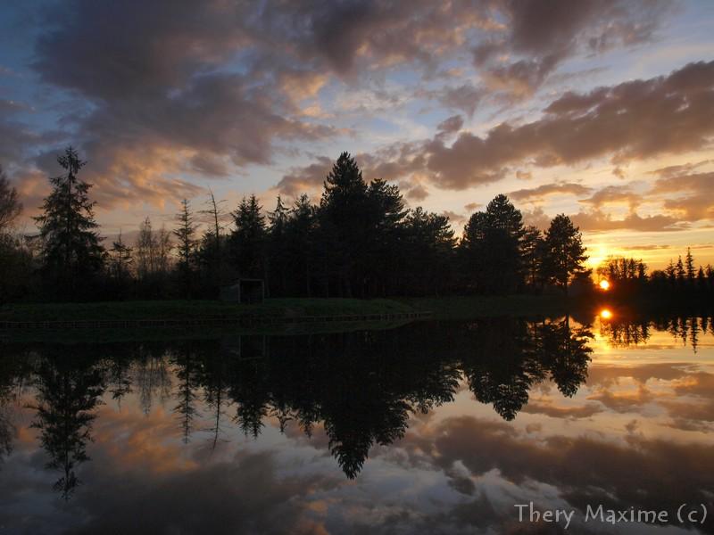 Tel un miroir dans l'eau  10nov2011PB104397